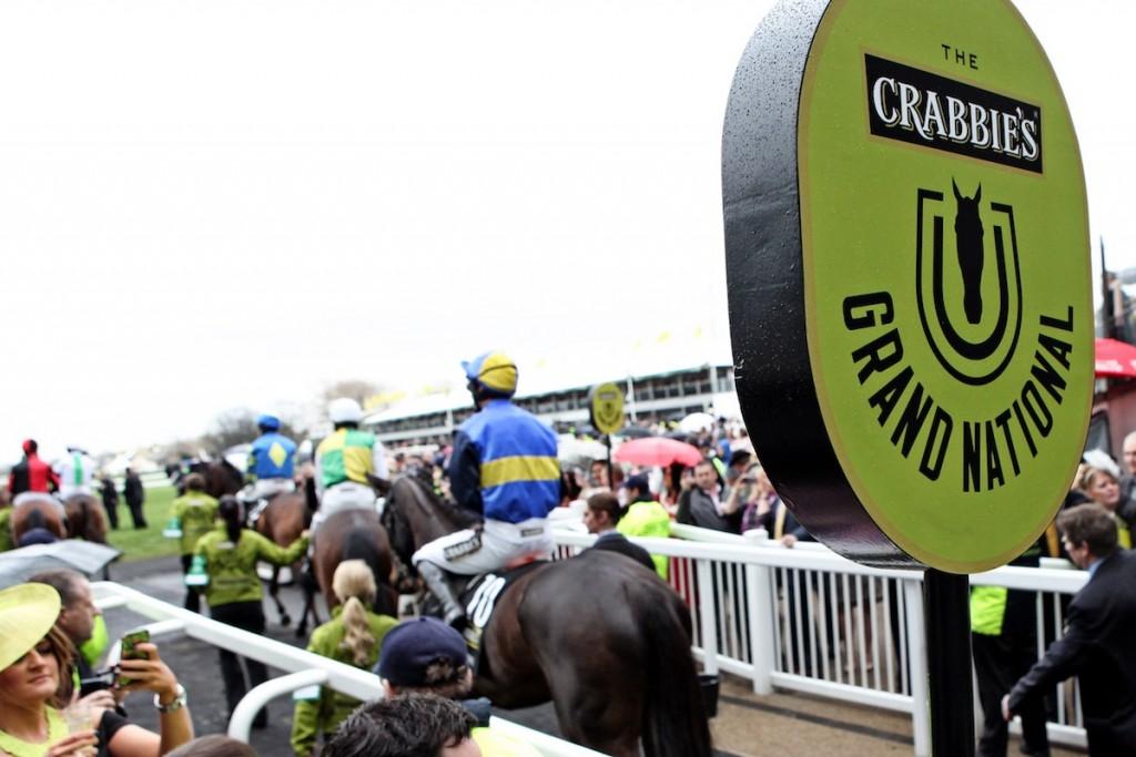 Crabbies Grand National - Race preparation