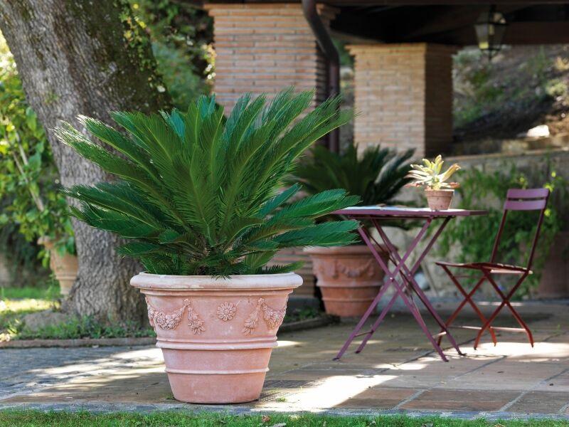 Italian clay pot