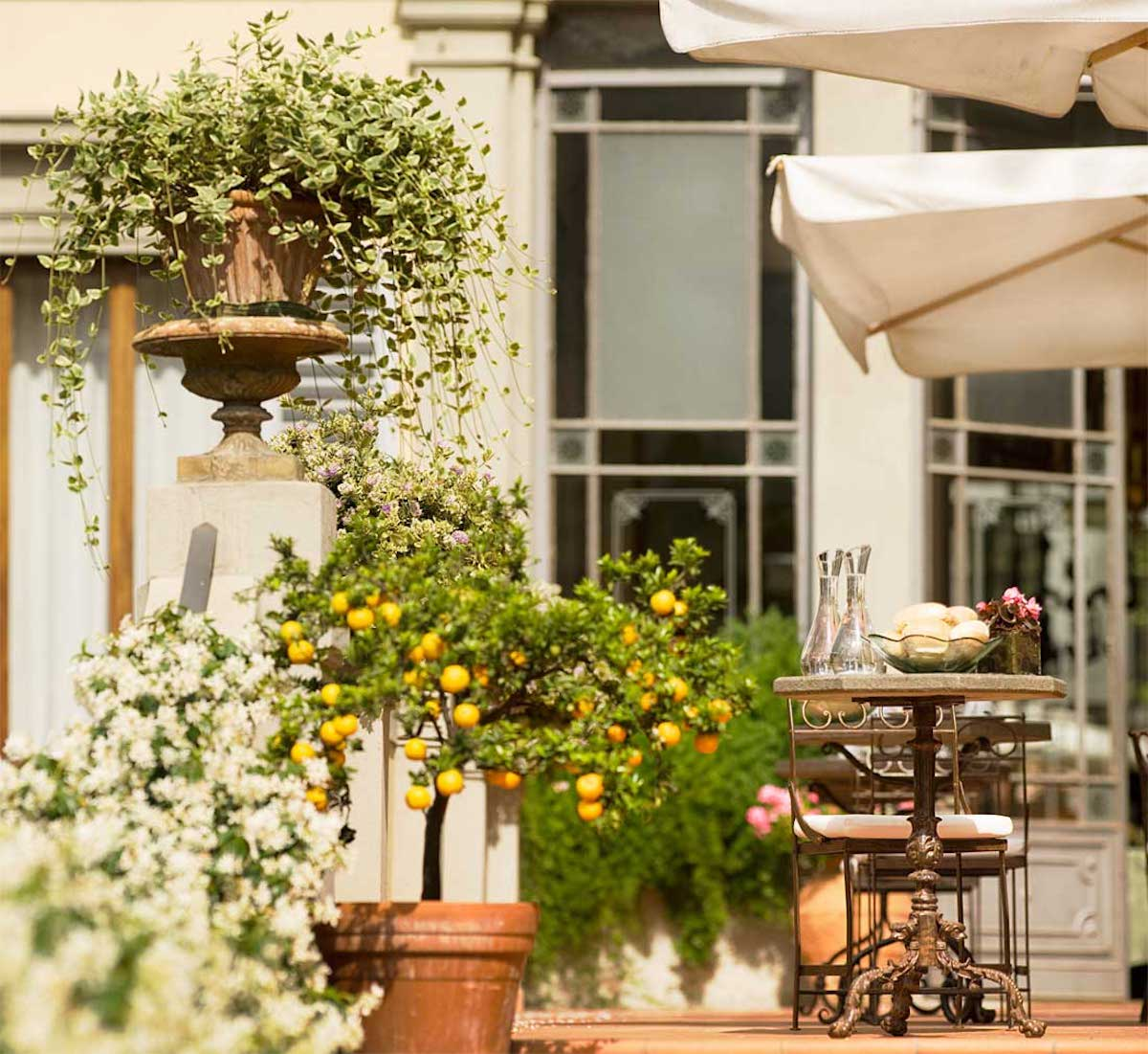 Hotel Orto de' Medici: A Great Discovery in Florence