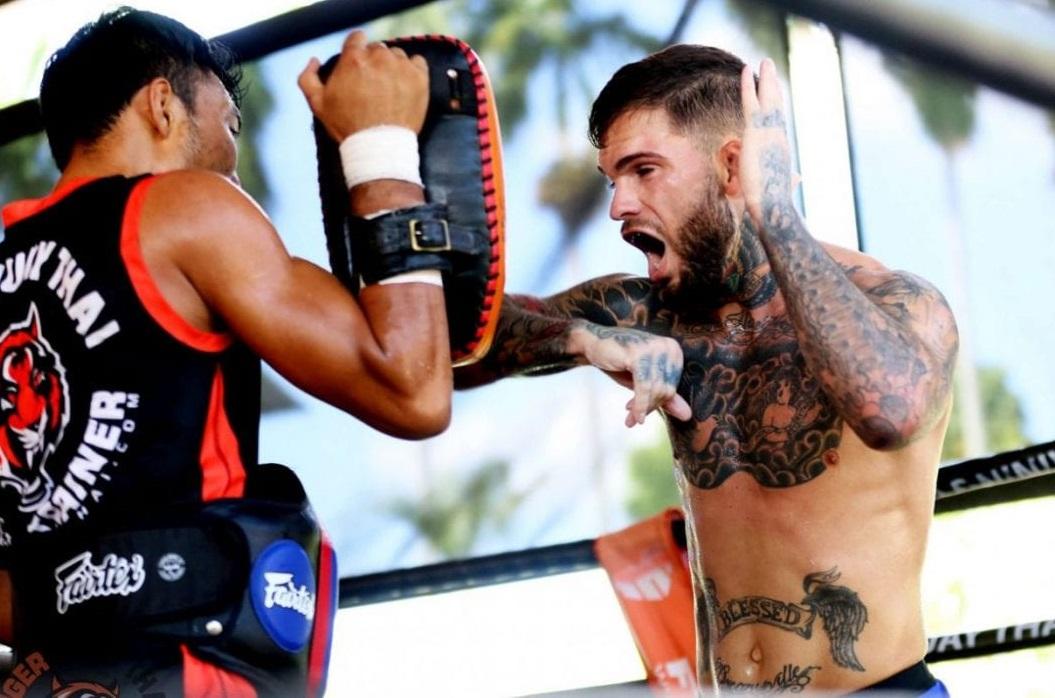 MMA training e1559572021563